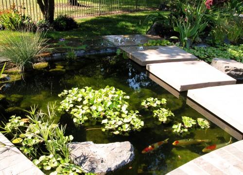 http://www.stangelandlandscape.com/wp-content/uploads/2014/08/Fountain-Pond-4-1000x600.jpg